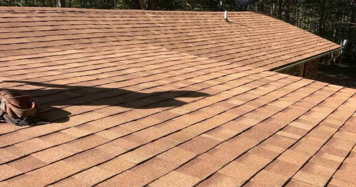 Roof Inspection: 5 Best Tips for Professional Roofers to Share with Landlord